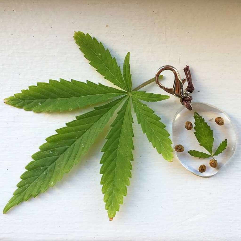 Cannabis leaf and seeds in resin key ring/accessory.